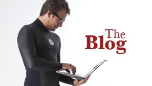 Nineplus Blog